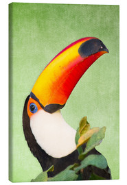 Leinwandbild  A colourful toucan bird on a tropical background. - Alex Saberi
