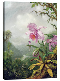 Leinwandbild  Kolibri thront auf einer Orchidee - Martin Johnson Heade