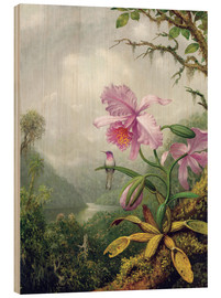 Martin Johnson Heade - Kolibri thront auf einer Orchidee
