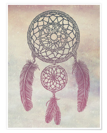 Rachel Caldwell - Dream Catcher Rose