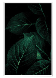 Premium-Poster Dark Leaves 1