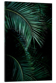 Mareike Böhmer Photography - Palm Leaves 9