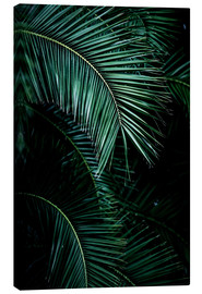 Leinwandbild  Palm Leaves 9 - Mareike Böhmer