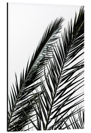 Alubild  Palm Leaves - Mareike Böhmer Photography