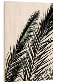 Mareike Böhmer Photography - Palm Leaves