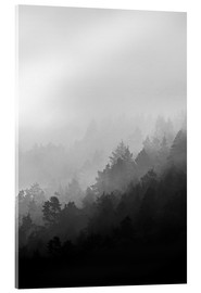 Acrylglas  Misty Mornings - Mareike Böhmer Photography