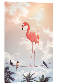 Acrylglasbild  Flamingo & friends - Jonas Loose