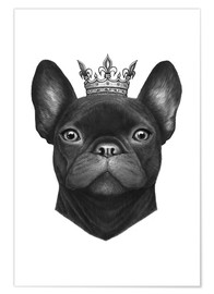 Valeriya Korenkova - Queen French bulldog