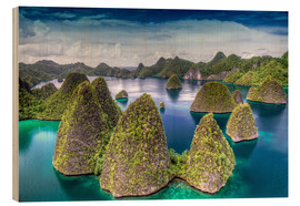 Holzbild  Raja Ampat in Indonesien - Jones & Shimlock