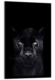 Acrylglas  Black panther on black - Valeriya Korenkova