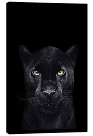 Leinwandbild  Black panther on black - Valeriya Korenkova