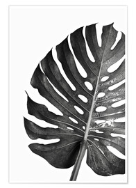 Premium-Poster  Schwarze Monstera 03 - Art Couture